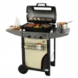 barbecue Campingaz Expert 2 Plus De Luxe